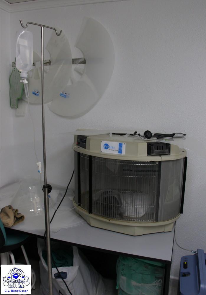 cvbenetússer clínica hospitalización