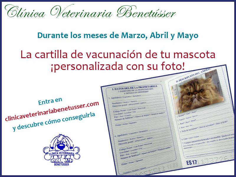 cartilla vacunación perros gatos promociones cartilla