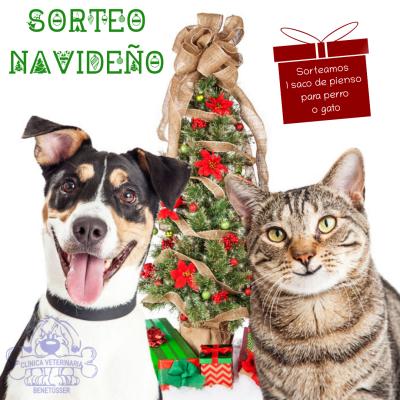 clínica veterinaria benetússer valencia sorteos navidad