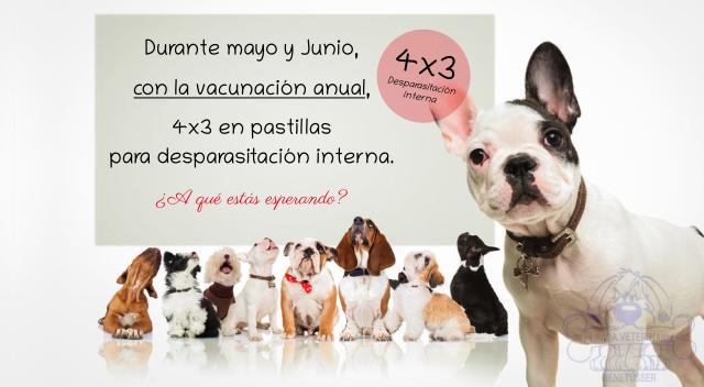 4x3 en pastillas desparasitación interna con la vacunación anual de tu perro.