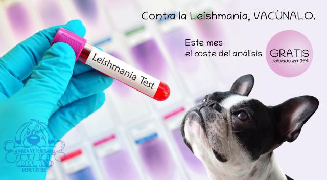 Campaña vacunación Leishmania mayo 2021